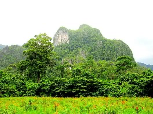 A permeable Karst Topography makes Palawan Province a fragile structure