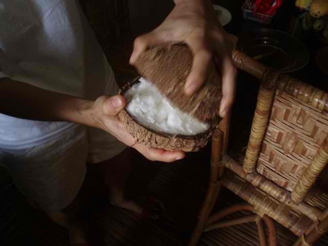 Separating the halves of the Macapuno Coconut