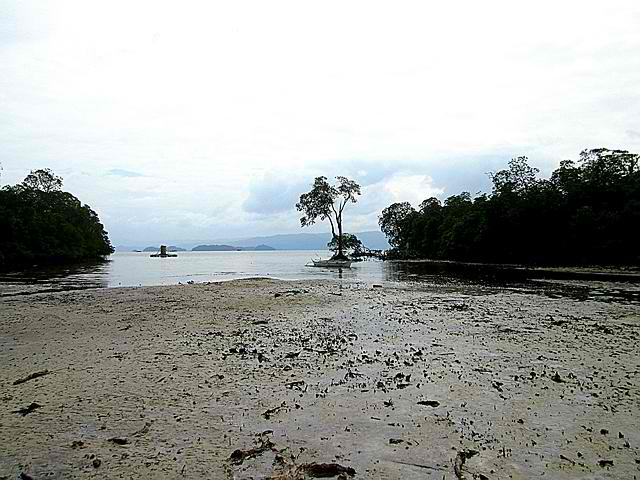 Manong Willyn's Beach Front