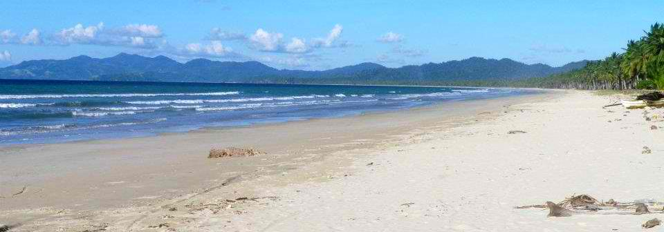 Part of the 14-kilometer Long Beach in San Vicente, Palawan